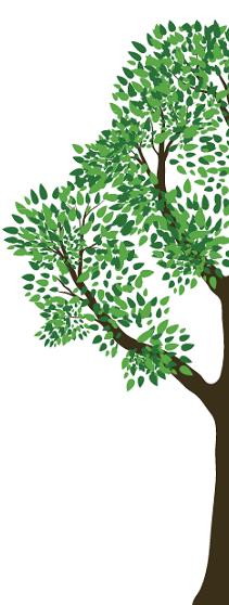 tree6 -2